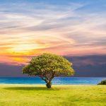 Τοπία για Ζωγραφική - Ανοιξιάτικα, Καλοκαιρινά, Φθινοπωρινά, Χειμωνιάτικα, Όμορφα, Μαγευτικά, Ξεχωριστά 39