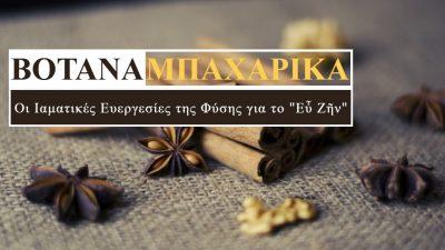 """Βότανα και Μπαχαρικά: Οι Ιαματικές Ευεργεσίες της Φύσης για το """"Εὖ Ζῆν"""""""