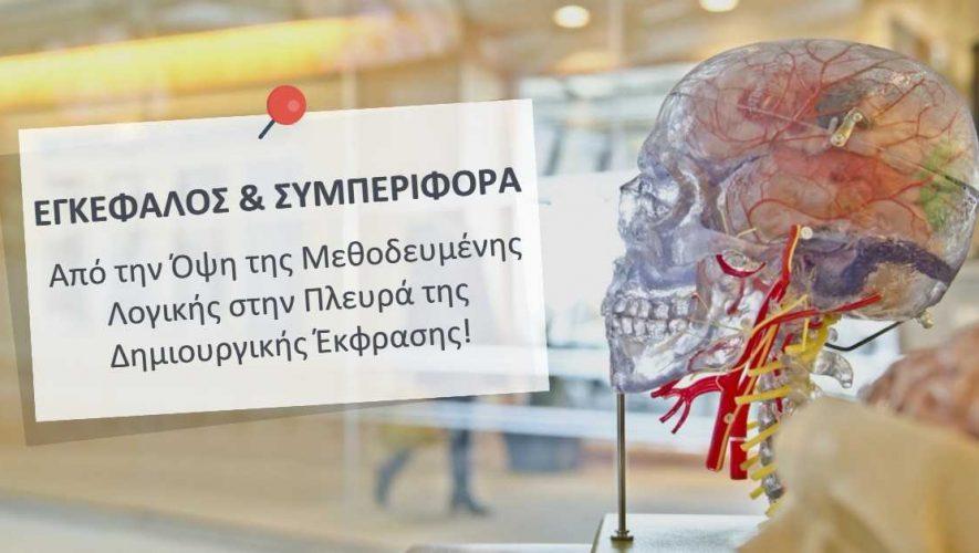 Εγκέφαλος & Συμπεριφορά
