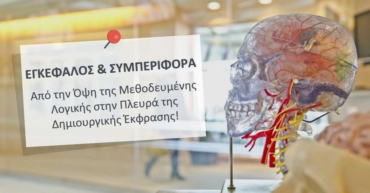 Εγκέφαλος & Συμπεριφορά: Από την Όψη της Μεθοδευμένης Λογικής στην Πλευρά της Δημιουργικής Έκφρασης!