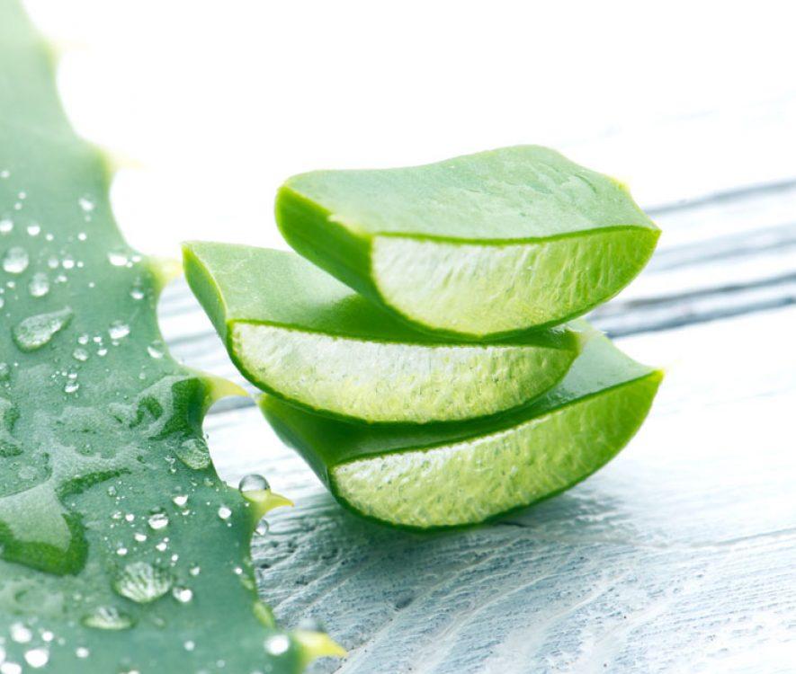 Αλόη Βέρα: Παρενέργειες, Θεραπευτικές Ιδιότητες, Χρήσεις & Τιμή
