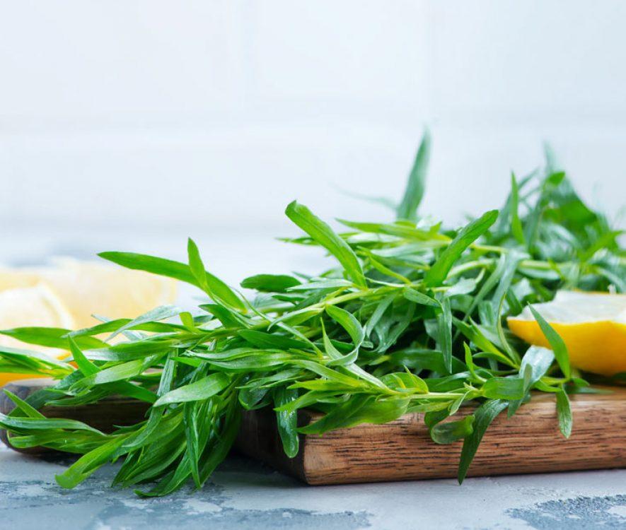 Εστραγκόν: Τί Είναι, Ιδιότητες, Θρεπτικά Συστατικά, Οφέλη & Συνταγές