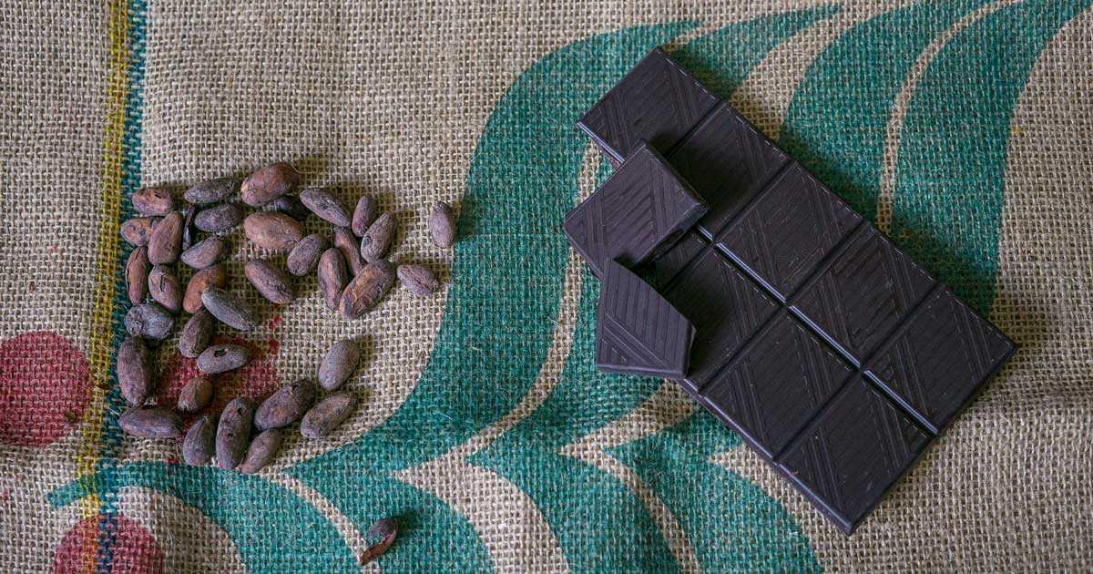 Κακάο: Ιδιότητες, Οφέλη, Θερμίδες, Παρενέργειες, Ρόφημα & Συνταγές | Βούτηρο Κακάο