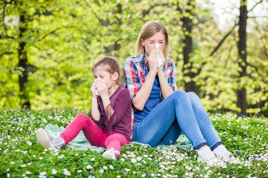 Αλλεργία στη Γύρη