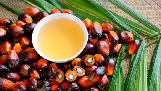 Φοινικέλαιο Ιδιότητες, Χρήσεις, Παρενέργειες, Κίνδυνοι, Αγορά