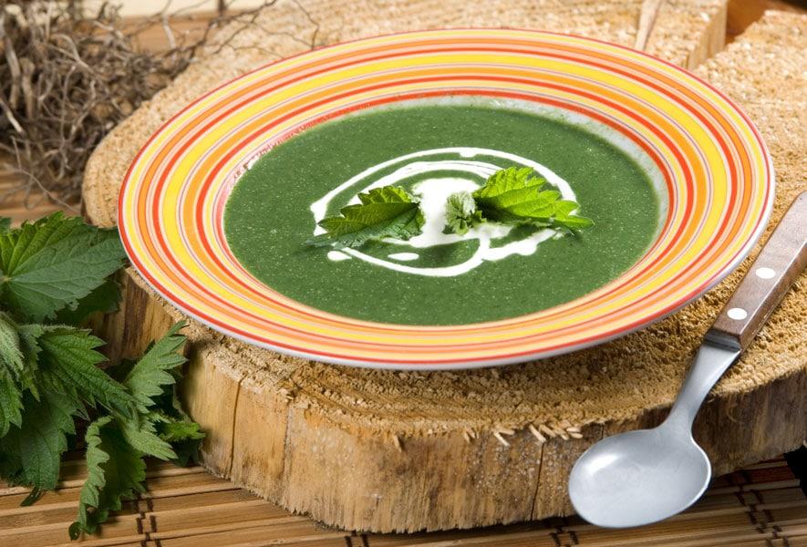 Τσουκνίδα Σούπα