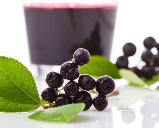 Αρώνια Φυτό, Καλλιέργεια, Ιδιότητες, Οφέλη, Παρενέργειες, Συνταγές, Τιμή